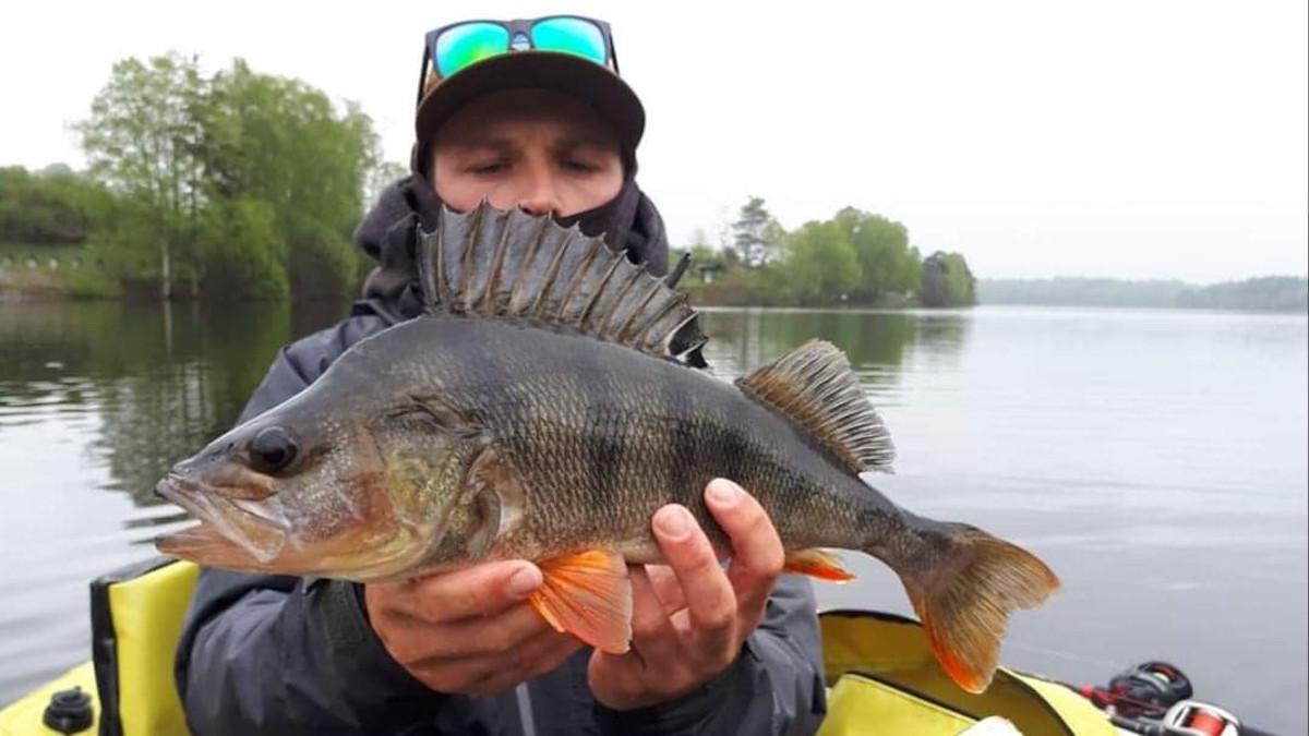 Initiation pêche des carnassiers en lacs de barrage Creusois